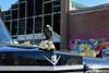 2015.10.10 Zombie Walk, Asbury Park, NJ (Katie Wilson Photography Adventures) Tags: park street new costumes people art halloween me walking dead skulls fun dorothy photography photo yummy blood photos pics zombie walk alice decay unique katie watching attack nj makeup down creepy special celebration event eat fairy dont shore artists brains jersey boardwalk wilson asbury undead skeletons adventures zombies wonderland tale nightmares amatuer on the practicing in 2015 braaiiins