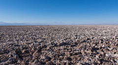 Salar de Atacama (Ralph Green) Tags: chile people southamerica saltlake salardeatacama andesmountains reservanacionallosflamencos atacamasaltlake soncorsector