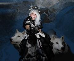 A.N.D_PhotoContest (pikacyu_clip) Tags: princess and 00twilight
