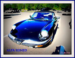 Alfa Romo what is your name ? C'est quoi ton nom ? (Give compassion to yourself) Tags: alfaromeo parcmarievictorin 20150926vacancesdt
