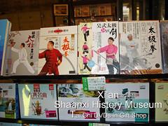 china xian shaanxi shaanxihistorymuseum