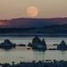 Mono Lake Moon Rise November 2013