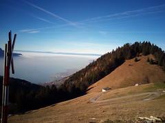 IMG_20161208_125651 (Puntin1969) Tags: telefonino svizzera viaggio vista scorcio montagna neve trenino