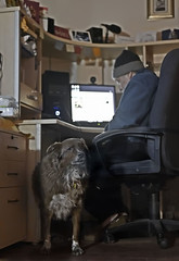 Partly Under (Signing Off Today-See U In A Week!) Tags: ddc 1874 underneath partly shizandra stu desk computer cards chair man dog animal dof morning