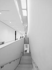 Some curious moments at Snohetta's SFMOMA interiors (Dan Hogman) Tags: architect architecture california danhogman danhogmanphotography danhogmancom fuji fujifilm fujifilmx instalation unitedstates usa xe1 sanfrancisco snohetta sfmoma