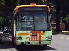 RTP Ayco Magno (Metroferreo) Tags: reddetransportedepasajeros rtp sistemam1 autopartesycomponentes international aycomagno canaldemiramontes metrotasqueña milpaalta autobusesurbanosciudaddemexico