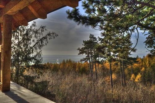 Blick zum Harz