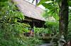 Bali Coffee Grounds (zingertek) Tags: coffee nature beautiful coffeegrounds indonesia indonesiatourism bali denpasar legian ubud