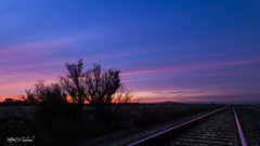 Hobo's Dream_MG_9911 (Alfred J. Lockwood Photography) Tags: alfredjlockwood nature twilight dawn bosque bosquedelapachewildliferefuge railroadtracks sunrise morning autumn sky newmexico color