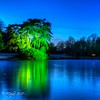 Florydille d'hiver @ jardin botanique de Meise (Mike Y. Gyver ( Organize in Albums)) Tags: 2017 myg meise tree jardin belgium belgique brussels bruxelles blue bluehour green landscape lac lake hdr d90 nikon nikkor18105 nature nightscape botanical garden