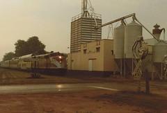 ATLANTIC COAST LINE E3 #501 WITH GOLDEN ARROW EXCURSION TRAIN Cross Plains, Wisconsin JULY 1984 (waunakee railfan) Tags: 501