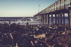 cayucos pier (explore) (troy_williams) Tags: cayucos centralca cayucospier surf waves ocean sea nature californiacoast pacificcoasthighway fujifilm fujixshooters xt1 xtrans water pier surfers driftwood lomo edits california explore wander