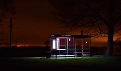 Bus Stop (Paul Thackray) Tags: yorkshire thorner bramhamroad busstop night nikond3300