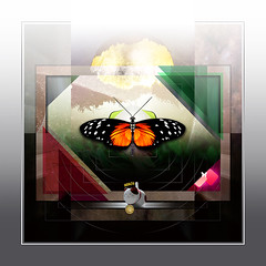Freedom (mfuata) Tags: freedom özgürlük aydınlık kelebek butterfly huzur peace barış sulh