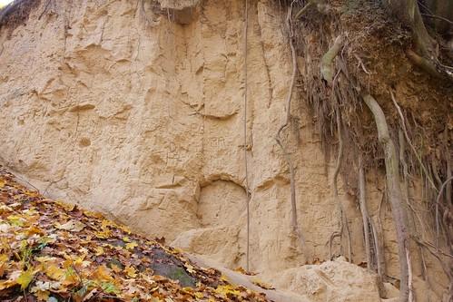 Wąwóz Królowej Jadwigi w Sandomierzu jesienią # 7