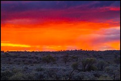 Sunset over Menindee Plains-1= (Sheba_Also) Tags: sunset over plains menindee