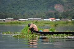 Inle lake, Myanmar D700 847 (tango-) Tags: burma inlelake birman birmania      inlelakefishermans lagoinlebirmania