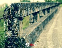 2012-10-06.008 (mauurena) Tags: puentes octubre 2012 duotono ingeniera papc
