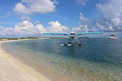 IMG_4092 (alauvstad01) Tags: usa us unitedstates florida keywest floridakeys drytortugasnationalpark luftfart dehavillandotter