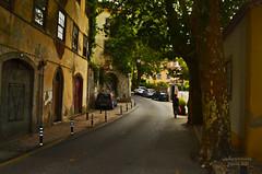 Sintra - Rua Gil Vicente (ChemiQ81) Tags: road street city cidade building portugal architecture nikon outdoor sintra centro center stadt rua nikkor portuguese centrum miasto portugese msto portugus portugalia ulica portugiesisch stadtzentrum  uliczka portugalsko portugalio portugalski portugala  chemiq portugaltina