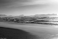 The beach on the Atlantic Ocean, Oualidia (Tomas Adam) Tags: ocean africa uk bw white black adam liverpool photography photographer photos pics and tomas morrocco maroko oualidia tomasadamphotography thebeachontheatlanticocean