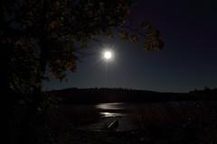 Moonlight_2015_09_26_0017 (FarmerJohnn) Tags: moon lake reflection water night canon suomi finland calm september silence midnight moonlight vesi kuu y laukaa jrvi keskinen syyskuu tyyni keskiy kuutamo valkola vedenpinta hiljaisuus septembermoon lakesurface canon7d heijatus anttospohja juhanianttonen ef1635l28iiusm