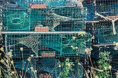 20150915 USA New England 01776 - Copy (R H Kamen) Tags: usa horizontal america outdoors photography trapped fishing day pattern order maine newengland nopeople cage stack backgrounds inarow lobstertraps lobsterpot colorimage largegroupofobjects fishingindustry animalthemes colourimage rhkamen