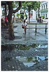 Plaza De Armas (SamyColor) Tags: color film oldsanjuan puertorico streetphotography colores sanjuan roll pelicula colori yashica avery carrete viejosanjuan plazadearmas lightroom colorido rolloffilm yashicaelectro35gt fotografiacallejera lightroom3 epsonperfectionv500scanner yashinoncolordx45mmf17