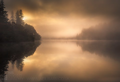 The Sermon II (GenerationX) Tags: trees mist water silhouette fog sunrise reflections landscape dawn mirror scotland shadows cross unitedkingdom ducks scottish neil calm gb marker trossachs barr gloaming aberfoyle lochard nohorizon kinlochard lochardforest canon6d