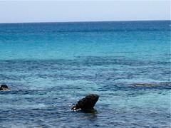 44473_711508031761_172010057_41911159_4232115_n (angelakourtes) Tags: travel blue trees sea mountains nature leaves islands europe exploring aegean adventure greece islandlife shadesofblue ionion bluezone islandlifeforme