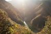 TOKUSHIMA DAYS - Iya valley (junog007) Tags: autumn light mountain tree japan river nikon outdoor shikoku nano tokushima autumnalleaves d800 iya 2470mm nanocrystalcoat