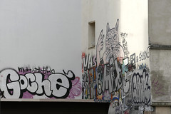Zoo Project - Goché (Ruepestre) Tags: streetart paris france graffiti graffitis vas zooproject goché