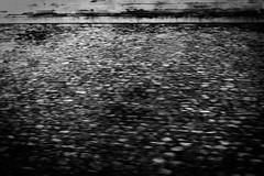 (bendikjohan) Tags: bw white black film blw fuji neopan neopan1600 bnw bl