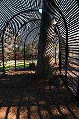 puff adder (sgrunbauer) Tags: shadow tree metal way walk iorn