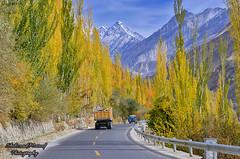 The Karakoram Highway (Shehzaad Maroof Khan) Tags: road trees pakistan sky snow mountains colors truck drive nikon highway jeep valley karakoram kkh hunza karimabad ontheroad cloudscape pakchina gilgitbaltistan