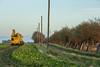 3U4A1458 (Bad-Duck) Tags: vinter mat ropa höst åker betor kväll skörd fält jordbruk lantbruk årstid livsmedel sockerbetor fältarbete livsmedelsproduktion betupptagare