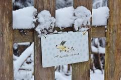 """""""Voll das wilde Leben"""" (chrissie.007) Tags: 20170106 schnee schild klingenmühle welzheim hund volldaswildeleben klingenmühlewelzheim hundeleben hommage"""