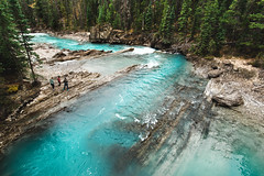 Kicking Horse River (eric.vanryswyk) Tags: kicking horse river yoho national park revelstoke golden field british columbia canada alberta lake louise banff jasper creek stream landscape forest water glacial glacier rapids waves reflections nikon d610 nikkor 20mm f18