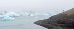 Jökulsárlón Fog (Kirk Lougheed) Tags: iceland icelandic jokulsarlon jökulsárlón bay fog glacier iceberg lagoon lake landscape mist outdoor photographer sky water proglacial