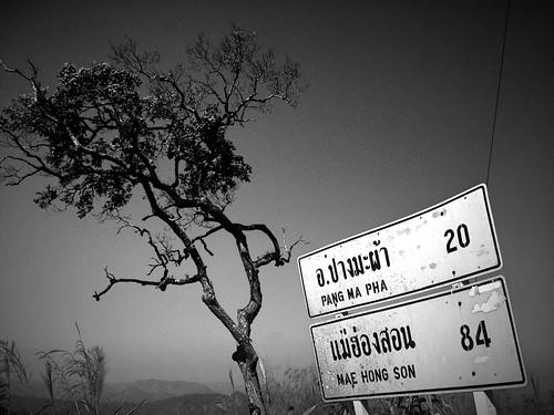Thaïlande (IP)