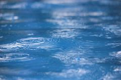 IMG_0393 (DaveGifford) Tags: mexico islamujeres rain casabonita
