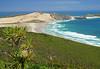 Te Werahi (terri-t) Tags: tewerahi beach sand dunes palms nature landscape tasman sea cape northland newzealand aotearoa mariavandiemen