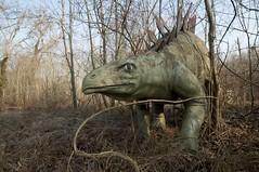 Stégosaure en pleine (in)action...