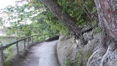 Oshima (Stop carbon pollution) Tags: japan 日本 honshuu 本州 touhoku 東北 miyagiken 宮城県 matsushima 松島