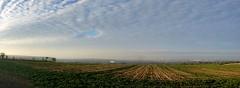 From the Ridgeway (SteveJM2009) Tags: swindon wiltshire uk january 2017 winter landscape panorama ridgeway stevemaskell cloudscape