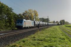 HSL LOGISTIK - PEINE (Giovanni Grasso 71) Tags: br186 e186 hsl logistik giovanni grasso nikon d610 locomotiva elettrica traxx ms bombardier peine