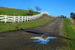 Spring Reflections (Heather's Reflections Photography) Tags: fence whitefence picketfence country countryside vacavillecountryside california spring springtime springincalifornia reflection water bluesky hills