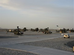 Late afternoon sun on the U.S.Army tarmac at Kandahar Air Base, Afghanistan. At the foreground there are some Bell OH-58D Kiowa Warriors. In the background some CH-47D Chinook and UH-60A Black Hawk helicopters can be seen. Kandahar, Spring 2008. (Aircraft throughout the years) Tags: late afternoon sun usarmy tarmac kandahar air base ab afghanistan foreground bell oh58d kiowa warriors warrior background ch47 ch47d chinook uh60 h60 uh60a black hawk helicopters spring 2008