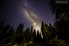 DSC_9196 (Kalder Morgan) Tags: trees night forest way stars shower lights nikon angle wide full idaho astrophotography frame astronomy scape milky f28 meteor milkyway d600 perseid perseids 1424mm