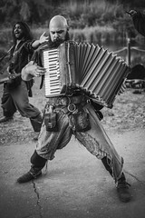 The Dread Crew of Oddwood (blaneyphoto.) Tags: music pirates band pirate newyorkrenaissancefaire heavymahogany